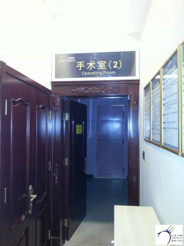 تجربتي لزراعة مقدمة الراس بالصين www.hairarab.com34cb