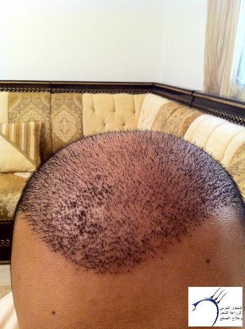 www.hairarab.com4c7c