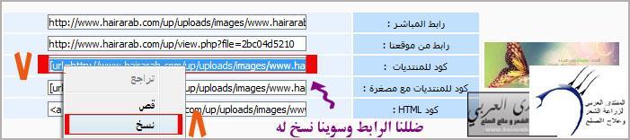 لتحميل الصور وتنزيلها بالموضوع www.hairarab.come321