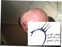 اسالكم بالله لاتبخلو علية بالرد www.hairarab.comeeff